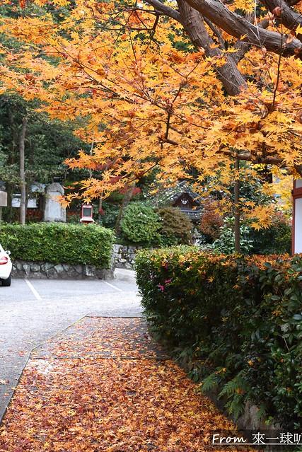 鷺森神社21