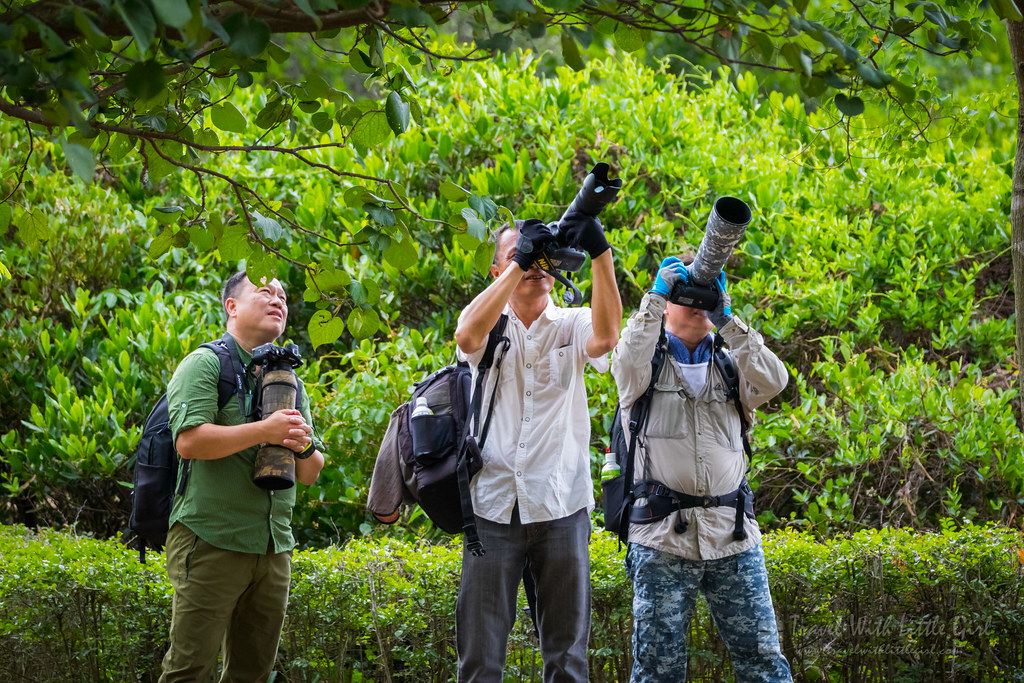 Bird Photographers, Hong Kong Wetland Park