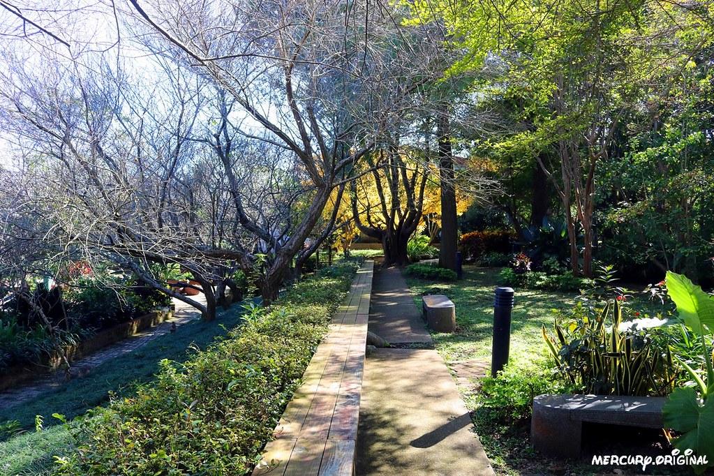 27410082409 55bef56ae8 b - 熱血採訪|新社千樺花園餐廳,森林裡的玻璃屋咖啡廳,品嚐無菜單法式料理