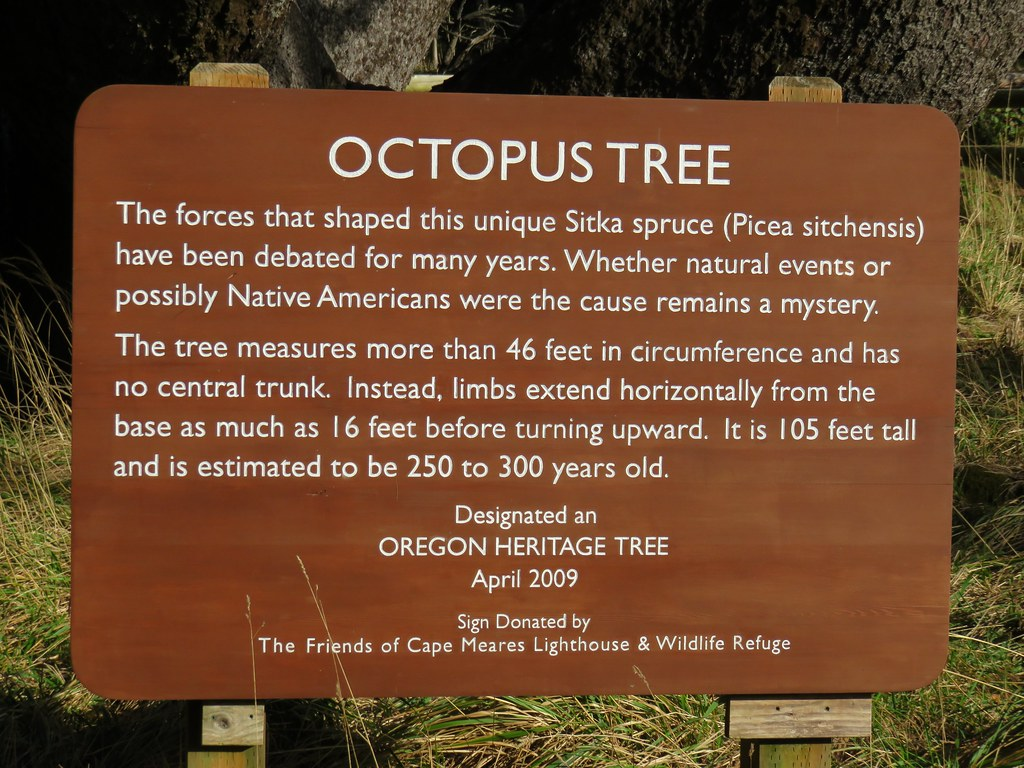 Sign for the Octopus Tree