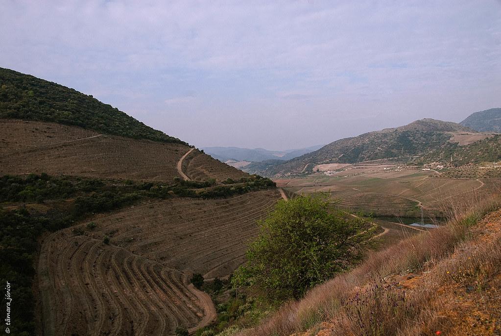 2012 - Linha Sabor (Pocinho-Moncorvo) 062