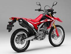 Honda CRF 250 L 2018 - 1