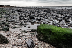 Large Green Stone on a rocky beach in Essex