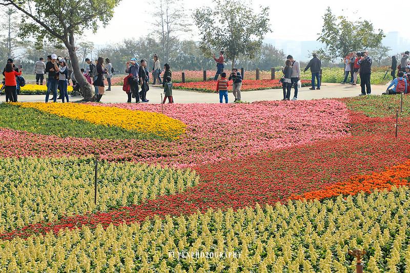 2017臺中國際花毯節43