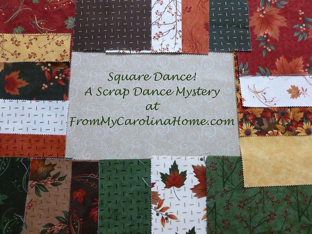 Square Dance! A Scrap Dance Mystery Quilt Along at From My Carolina Home