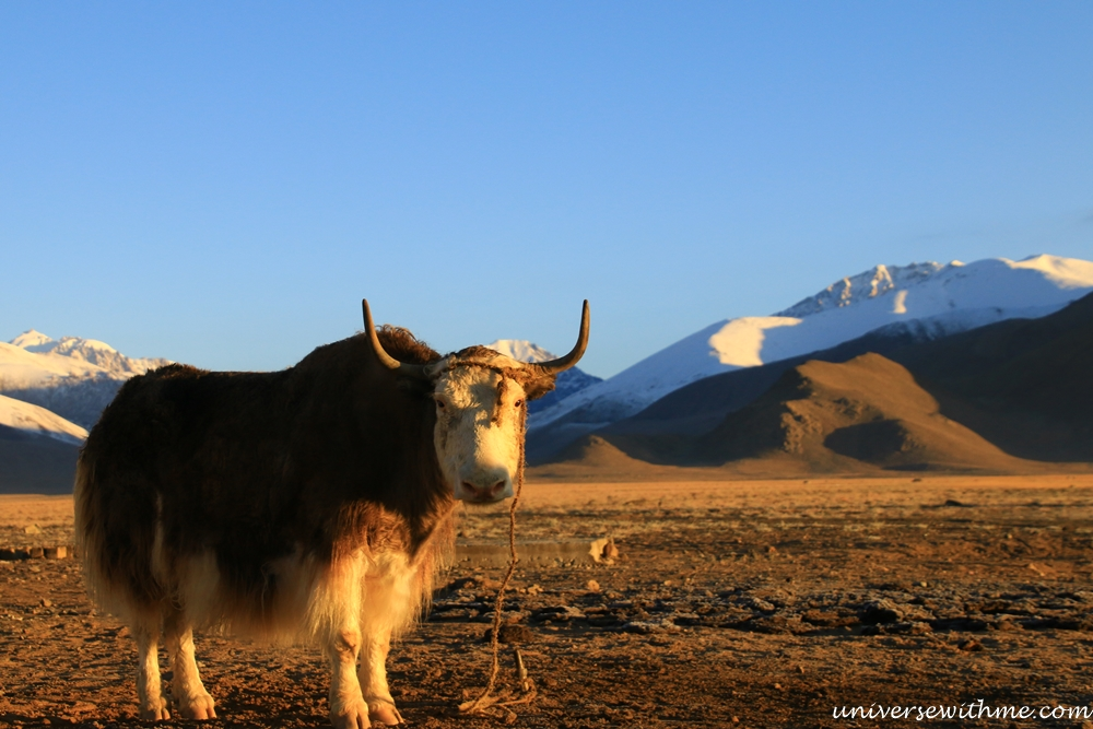 Tajikistan-Pamir Highway 080