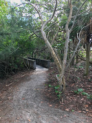 trail to blind pass beach