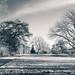 Kew -316122017-Edit.jpg