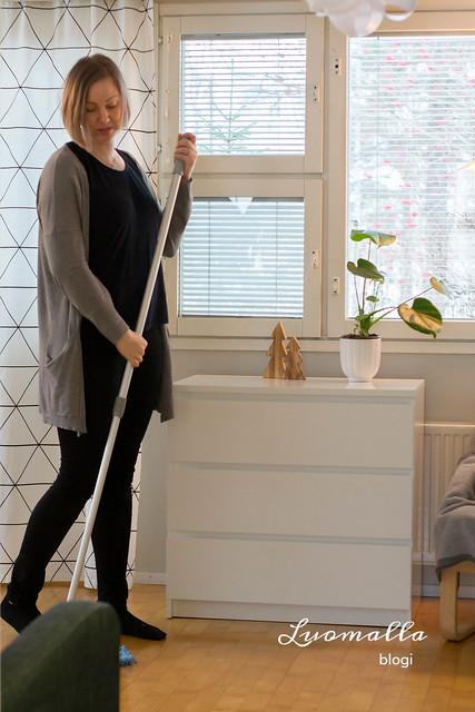 ammattilaisen siivousvinkit