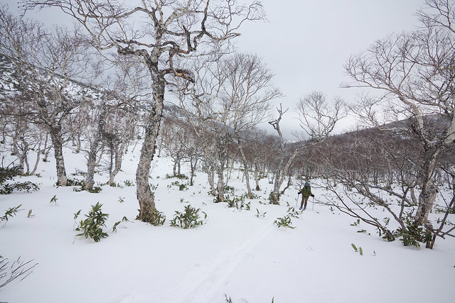 Photo:Mt. Mokoto Hut Overnight Ski Tour (Lake Kussharo, Hokkaido, Japan) By Robert Thomson