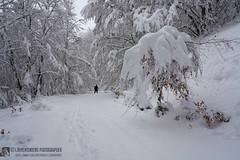 Valle di Visso in invernale, l'anello (Monti Sibillini)