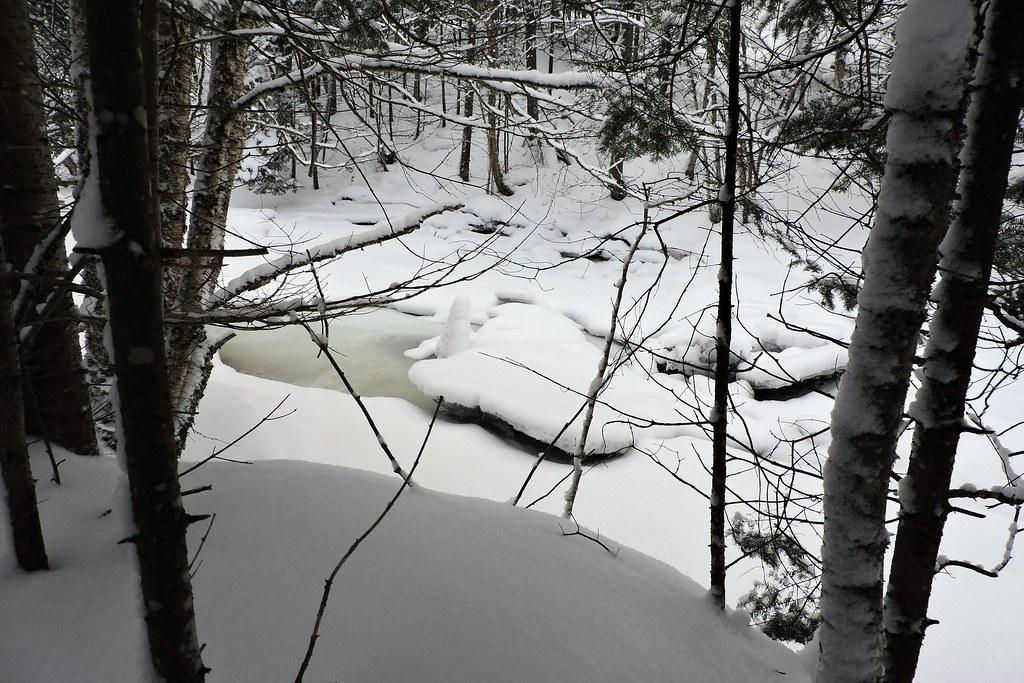 Ruisseau de la montagne