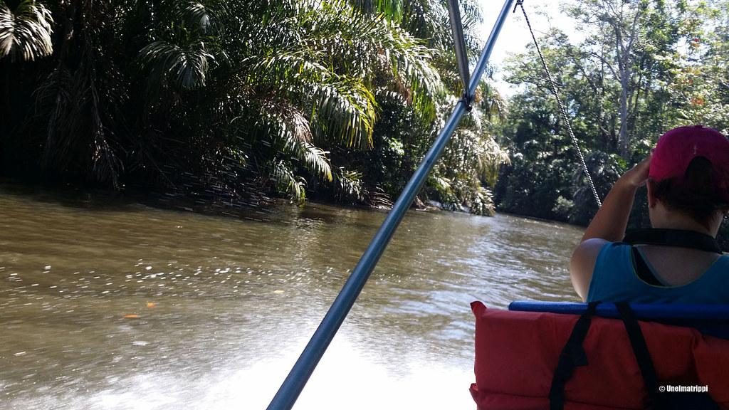Venekyyti Costa Ricassa
