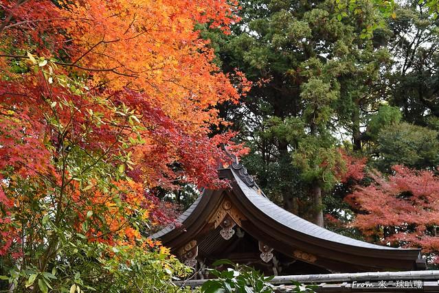 鷺森神社09