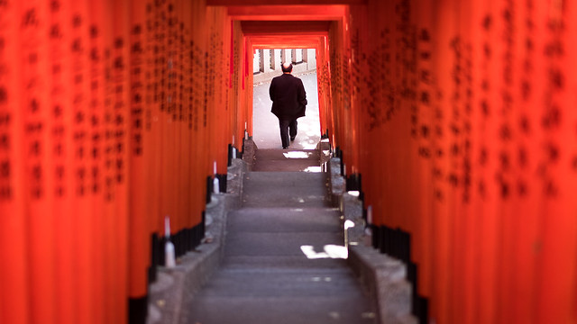 The Torii tunnel - Tokyo, Japan - Color street photography