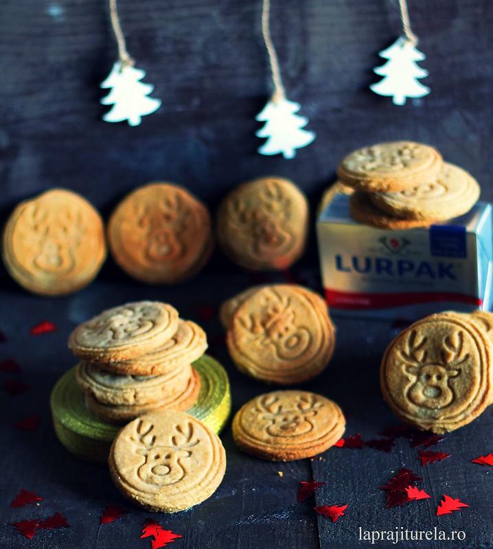 biscuiti ren 3