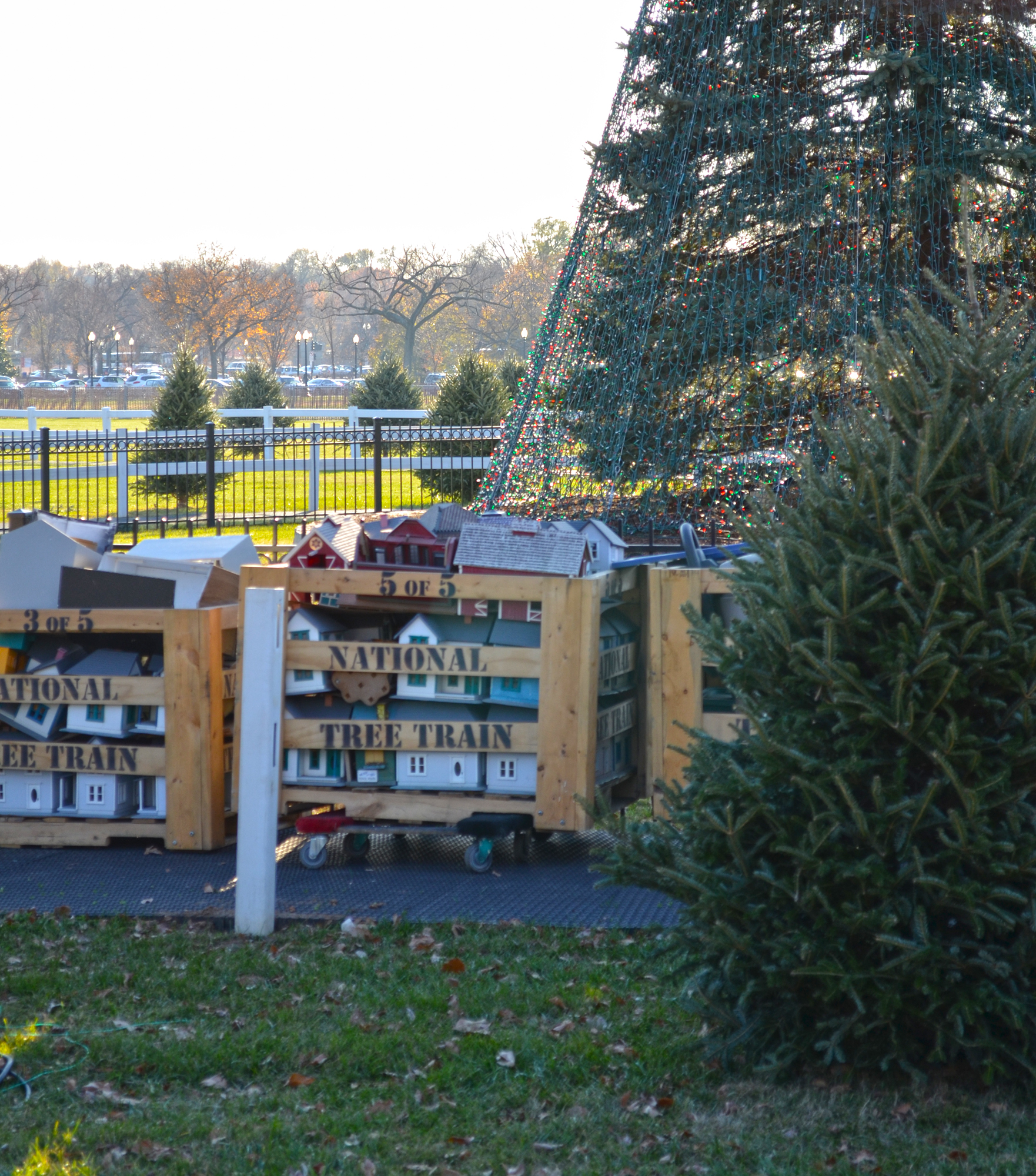 The model railroad train is ready to be unpacked and set up at the base of the 2012 U.S. National Christmas Tree. An undecorated