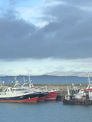Beautiful morning in the village this morning after breakfast and a coffee a beach walk went over the head at the harbour all the boats are home and will light up this evening to bring the new yer in.Love & light for 2018 lads