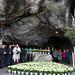 hommage florale à la Vierge