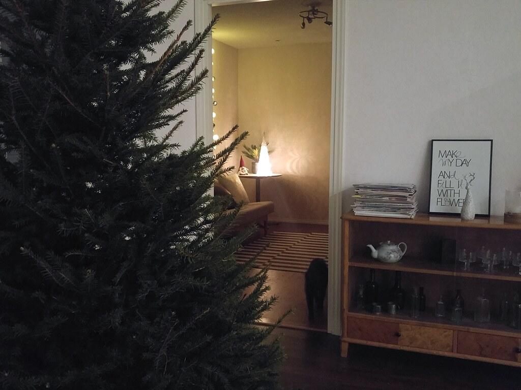joulukuusi_