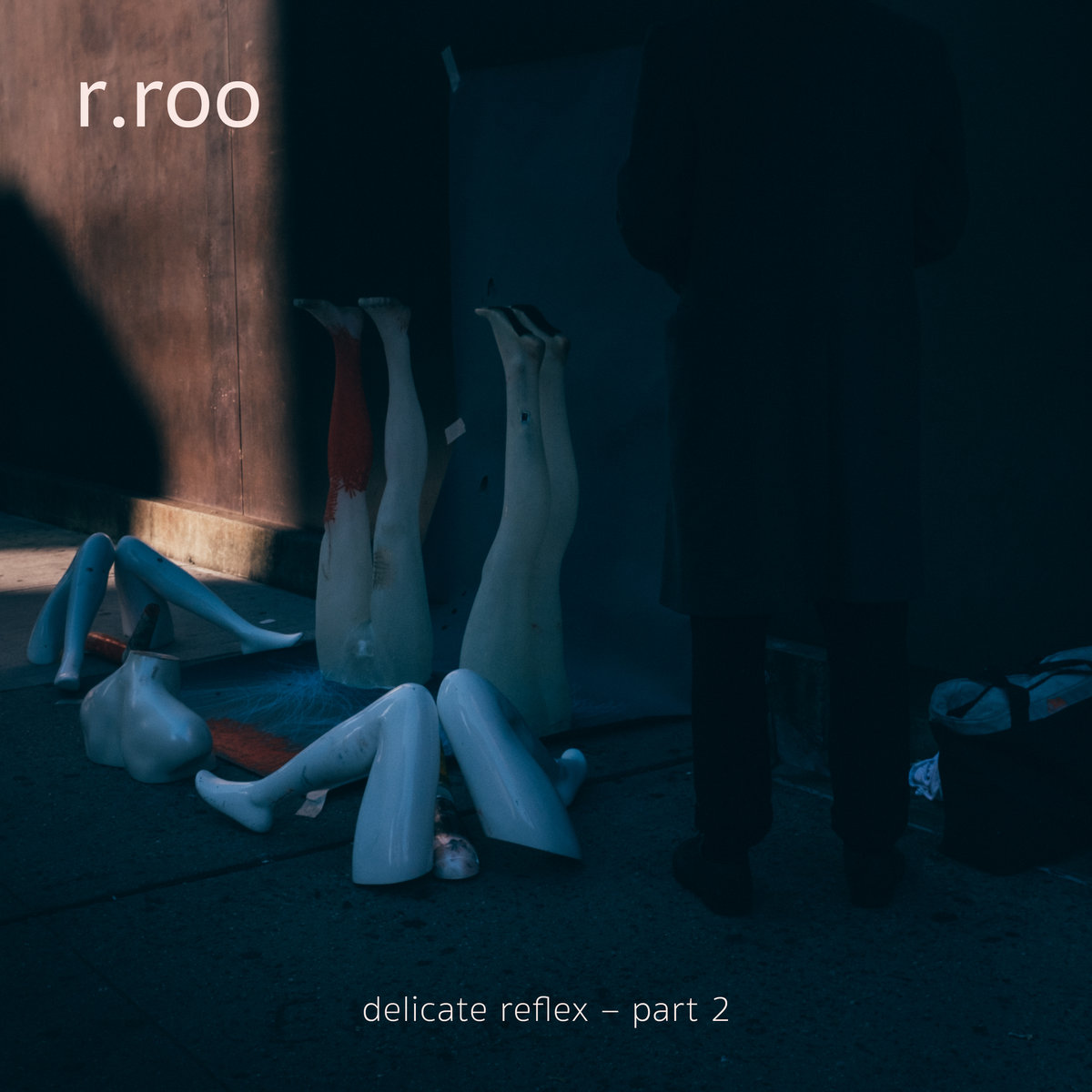 r.roo — delicate reflex — part 2