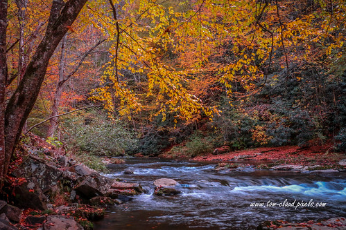 stream mountain mountainstream fall colors fallcolors autumn northcarolina andrews rural country usa landscape