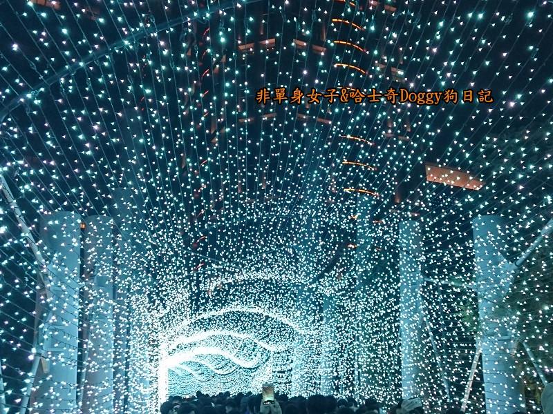 聖誕節17新北市耶誕城