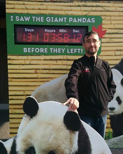 """I Saw The Giant Pandas Before They Left!"" #toronto #torontozoo #pandas #giantpandaexperience #me #latergram"