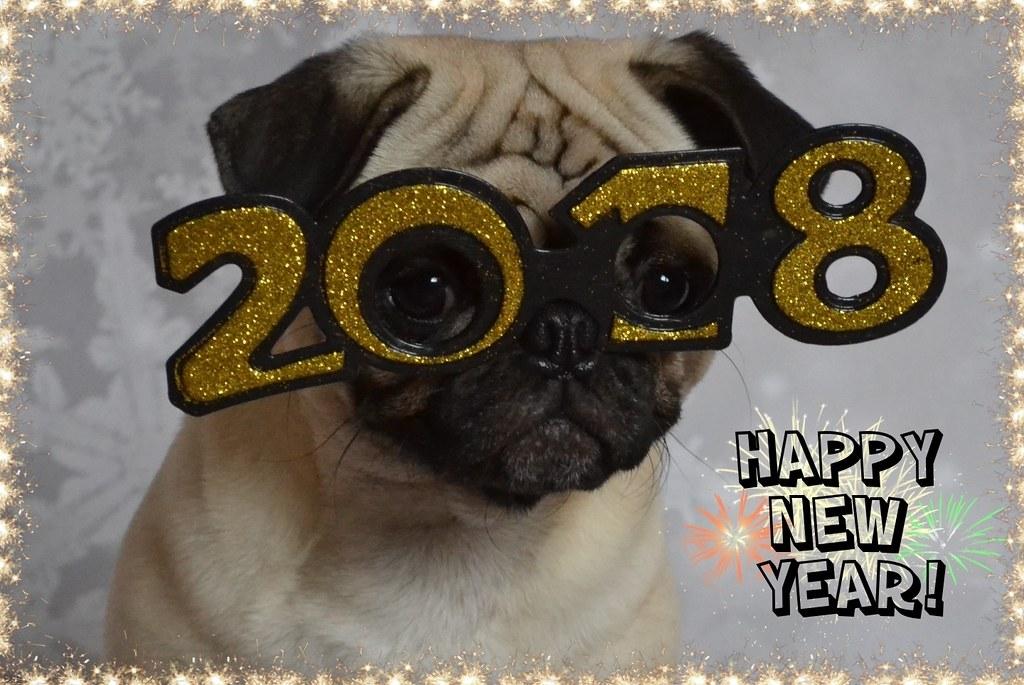 Happy New Year! Bonne Année Mes Amis!