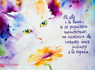 instants infinits —del llibre de poemes curts en català Gira-sol nocturn. Aquarel·la Eva Elias
