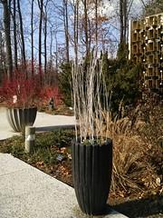 Seasonal decorations, Admin Building/Visitors Services entrance, US National Arboretum