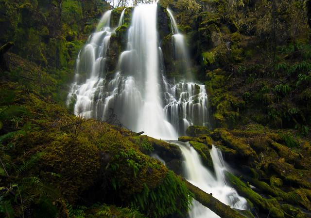 South Fork Cripple Creek Falls - 55 ft