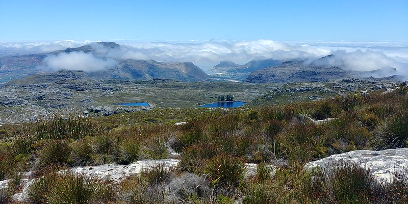 The reservoirs and Hout Bay beyond