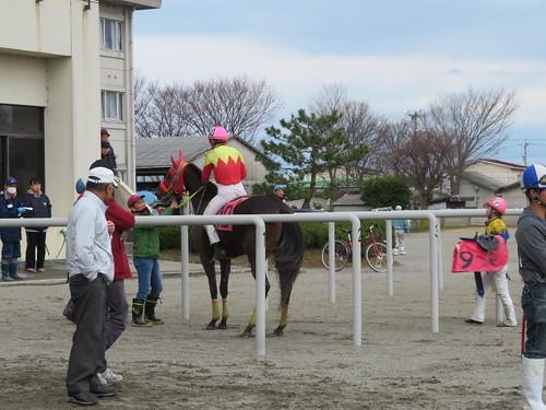 金沢競馬場で入着した馬が枠場におさまる