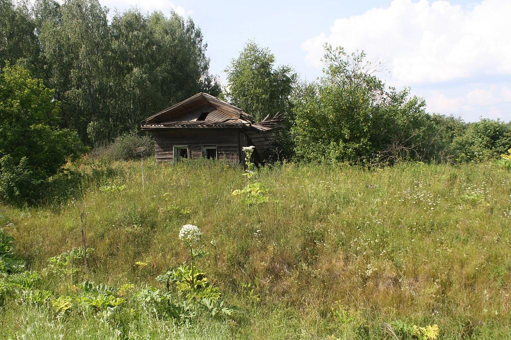Orlov-3