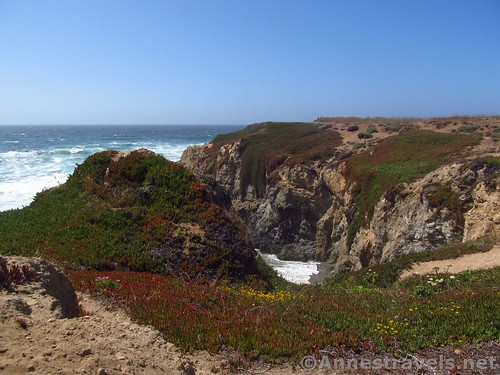 Cliffs swathed in greenery and wildflowers north of Glass Beach, California
