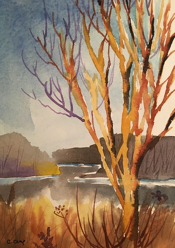 Watercolor. December Tree Overlooks Snow Crested Bank. Churchill Woods.