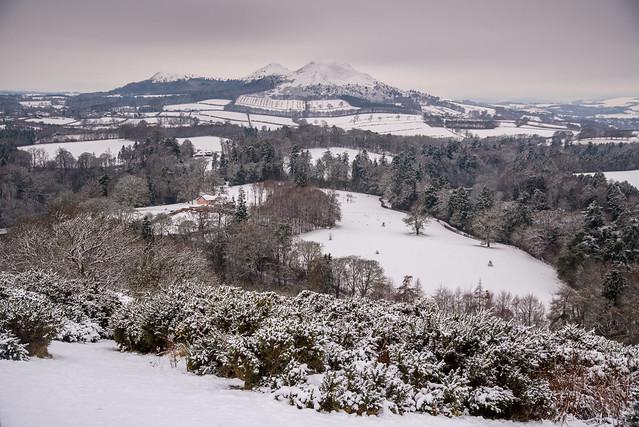 Scott's view in winter