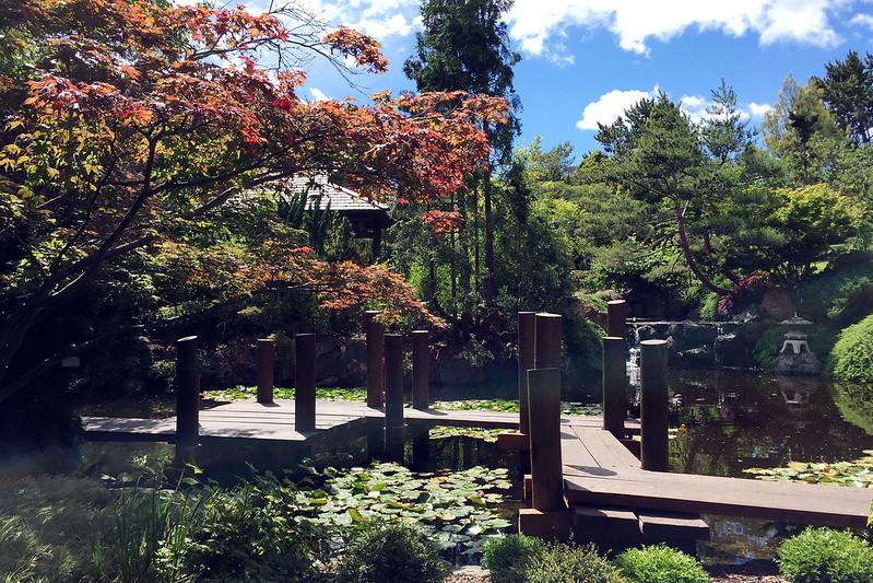 Japanese Garden, Hobart