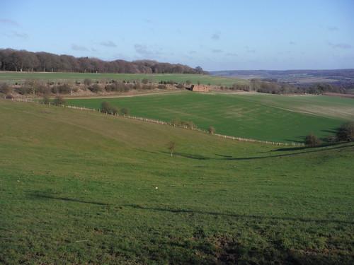 Streatley Warren (view from westerly edge)