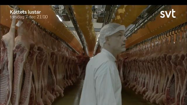 Köttets lustar