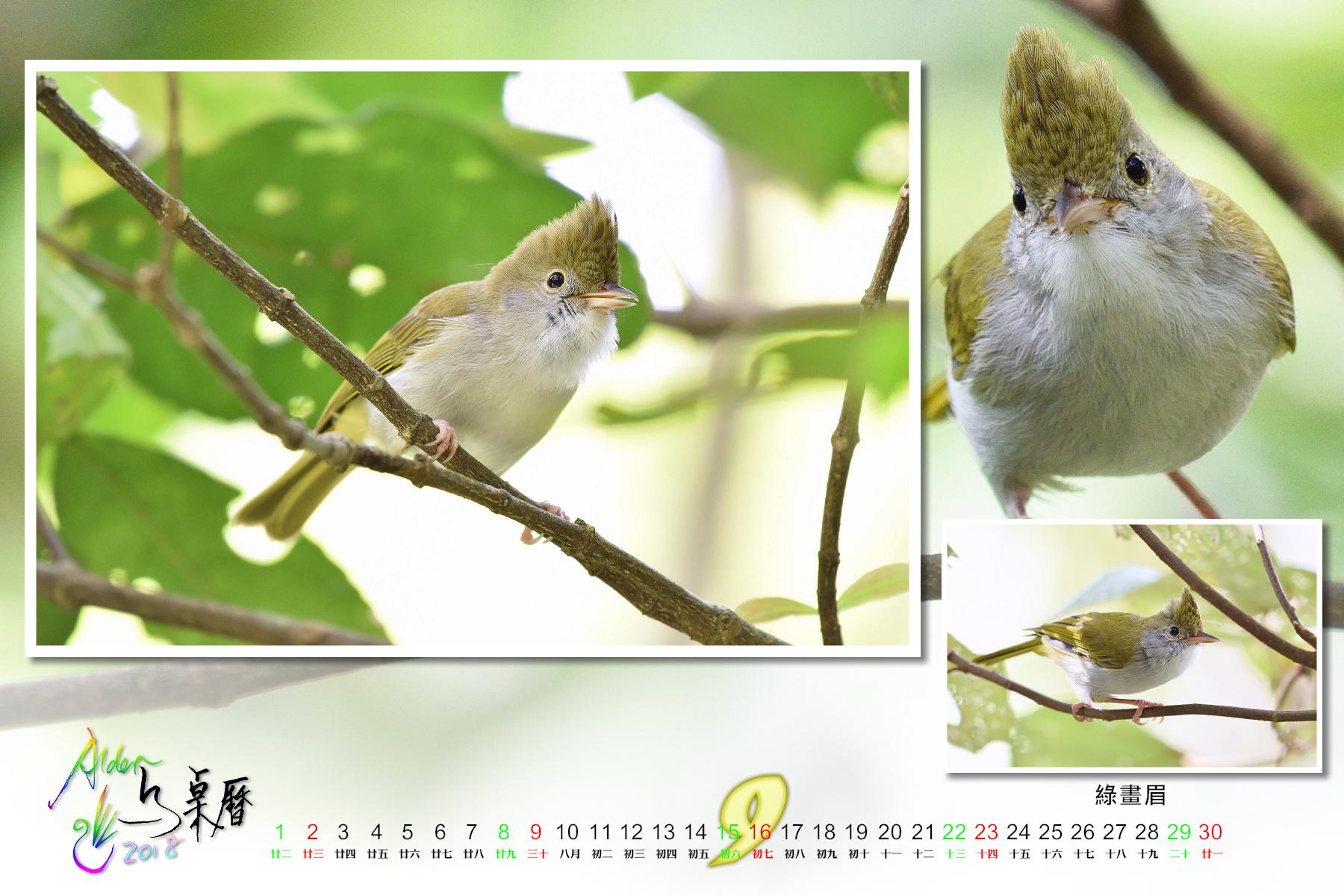 Calendar2018-002_09