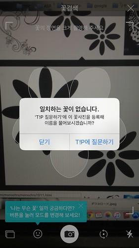 koreanapps-flowersearch21