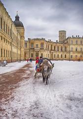Winter in Gatchina