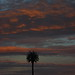 Sunset 11 13 17 #01 por Az Skies Photography