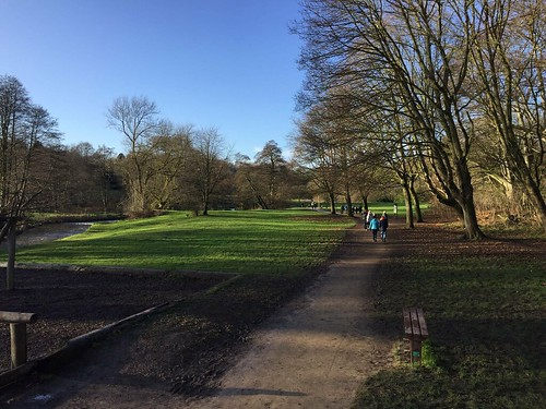New Year's Day parkrun 2018