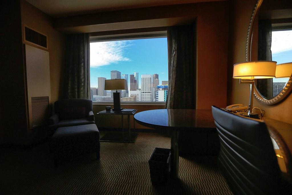 Hilton Americas-Houston Standard Suite 16