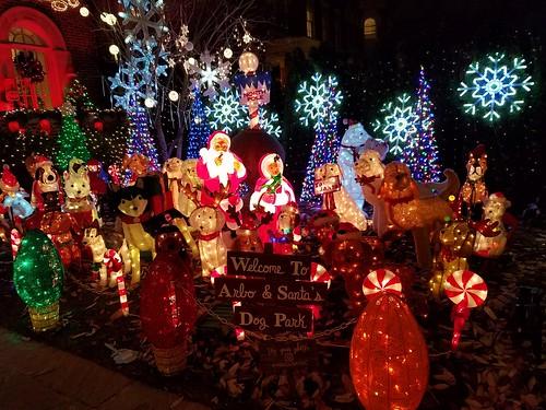 Arbo & Santa's Dog Park