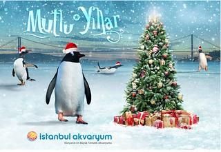 İstanbul Akvaryum Yeni Yıl Maili