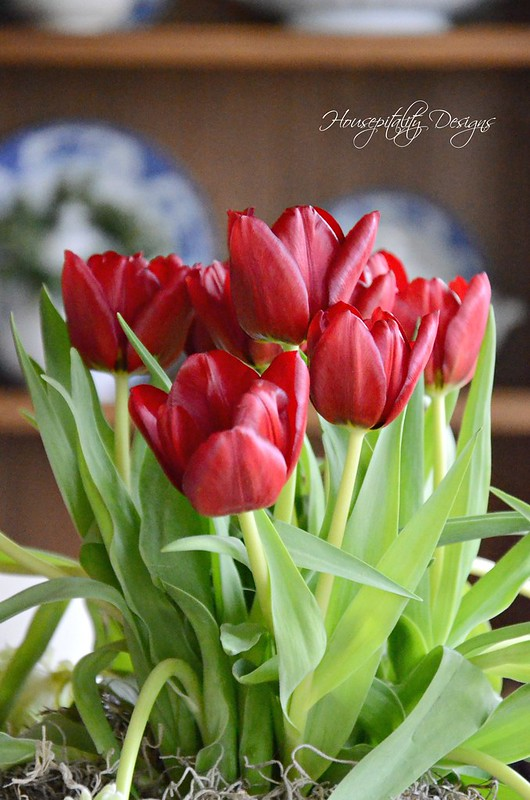 Tulip Arrangement-Housepitality Designs-5
